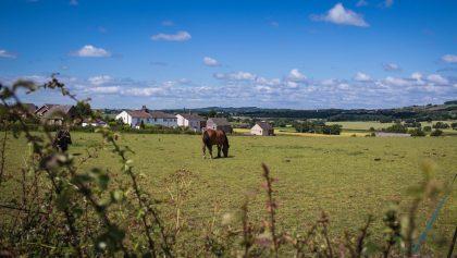 10.2.1.3. – Diversificação de Atividades na Exploração Agrícola