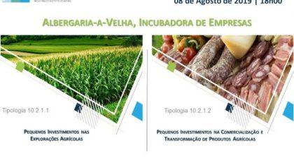 08 de Agosto | Incubadora de Empresas de Albergaria-a-Velha | Sessão de Esclarecimentos