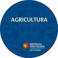 Ministério da Agricultura Anuncia Medidas de Apoio ao Setor devido ao Coronavírus